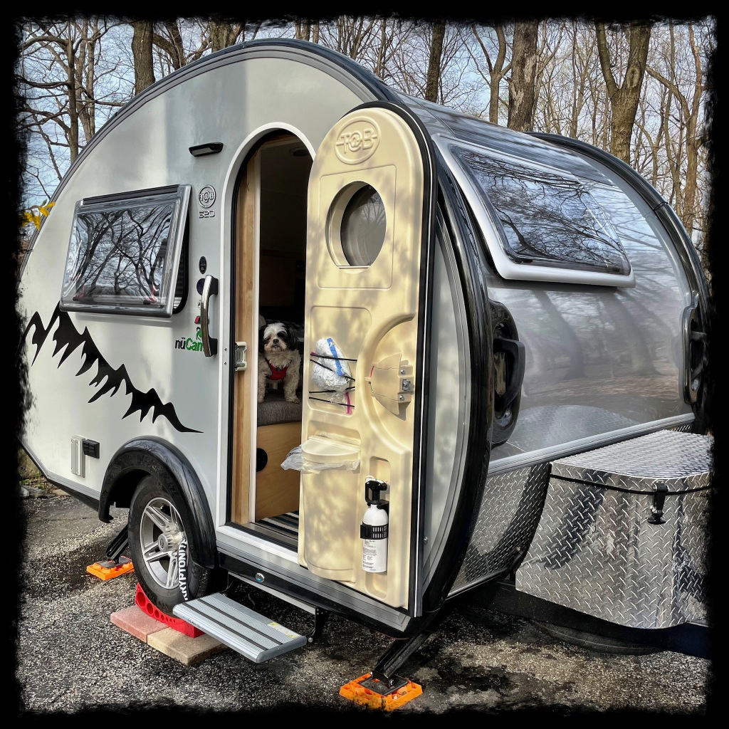 Shih Tzu dog Ketu is in the camper looking out of the open door