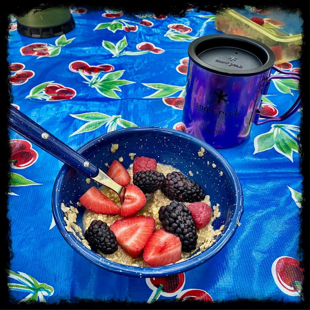 bowl with oatmeal, blackberries and raspberries
